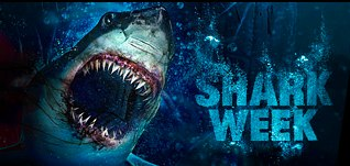 Discovery Channel's Shark Week Graphics